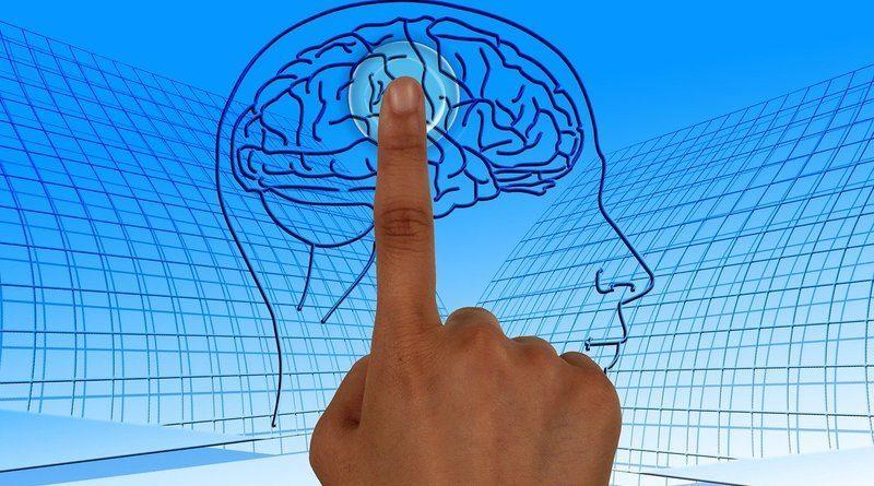 Мозъкът е изграден